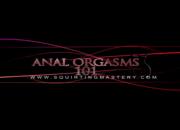 Anal-Orgasm-101-Seminar
